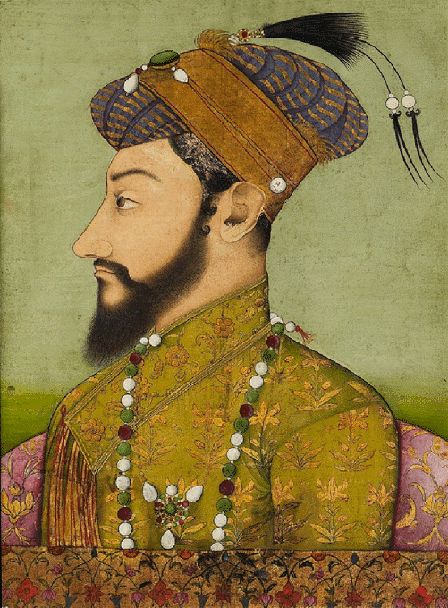 Aurangzeb Net Worth